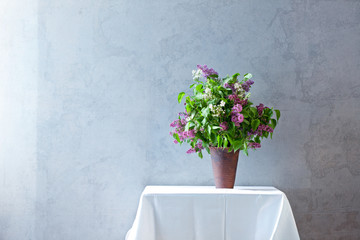 Lilac in front of stylish wall