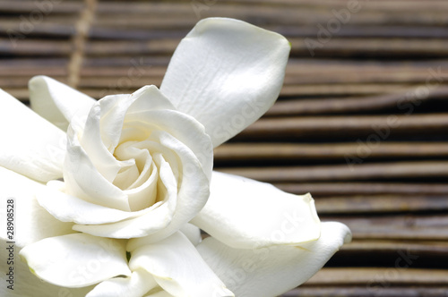 White gardenia flower on bamboo mat © Mee Ting