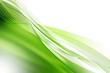 Solar fond vert