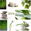 Fototapeten,zen,kieselstein,fallen lassen,pflanze