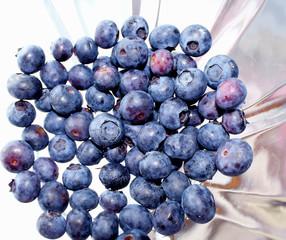 Healthy Organic Blueberries