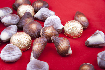 chocolate sweets in shape of little shells