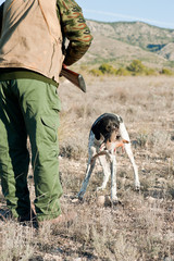 Hunting dog retreiving