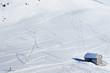 tracce sulla neve - Dolomiti - Pampeago Val di Fiemme 2011