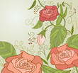Sweet Pink Roses inretro style with green leaf