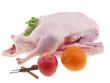 fresh whole goose