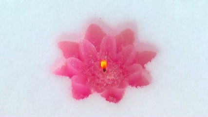 pink candle in the snow