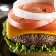 juicey cheeseburger macro