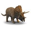 3d triceratops dinosaur