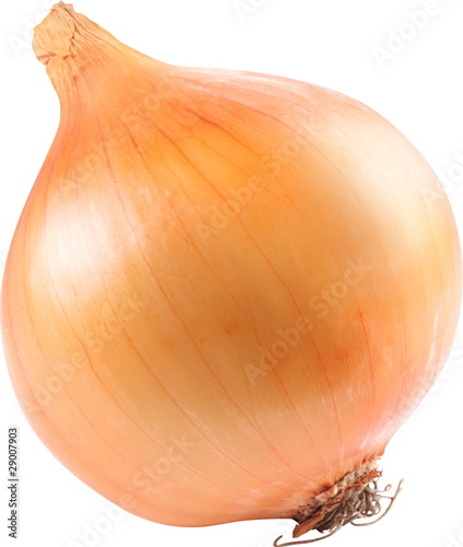 Image of onion on white background.