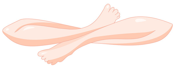 illustration of stylized crossed legs. clipping path included.