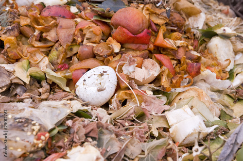 An eggshell in the kitchen Waste