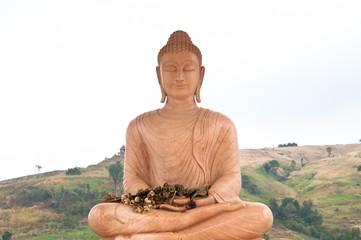 Image of Buddha on the mountain