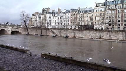 quai de seine - Paris