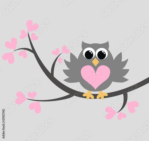 Fototapeta a grey owl sitting in a tree