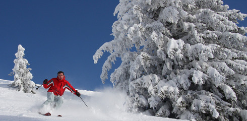 Skifahrer im Tiefschnee Panorama