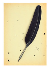 Feather quill  on an old paper