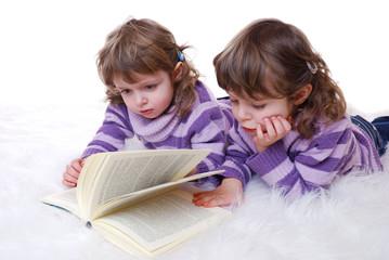 Zwillinge lesen Buch