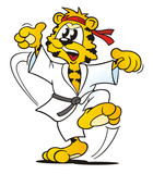 Tiger Aikido isolated
