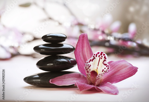 Wall mural Spa Stones