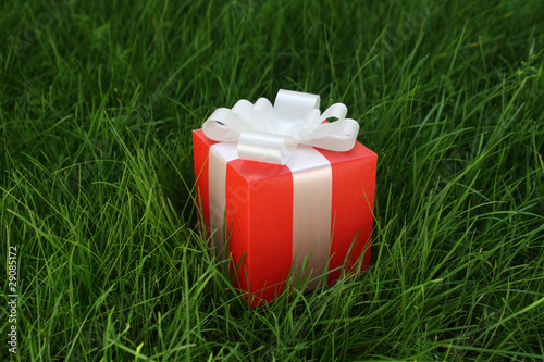 Gift box on a grass