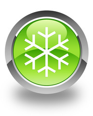 flower like snow icon on green button