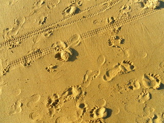 Sand with Footprints