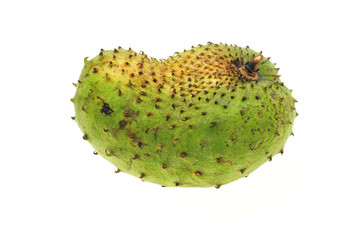Green Thorny Tropical Fruit, Soursop