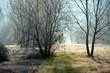 inverno paesaggio 1512