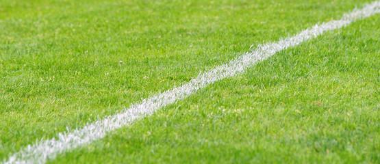 Fußball Rasen mit Linie diagonal - Soccer Grass