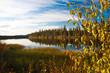 Alaska Indian Summer See