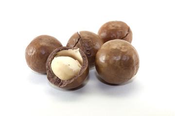 macadamia nut in a nutshell
