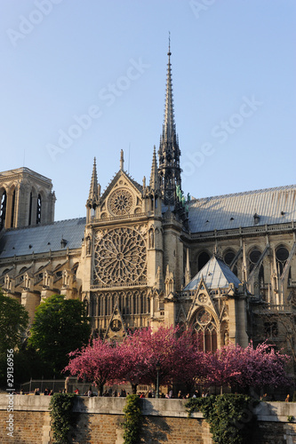 Notredame Cathedral, Paris