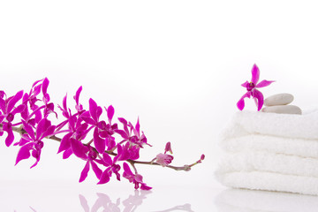 purple orchid with towel