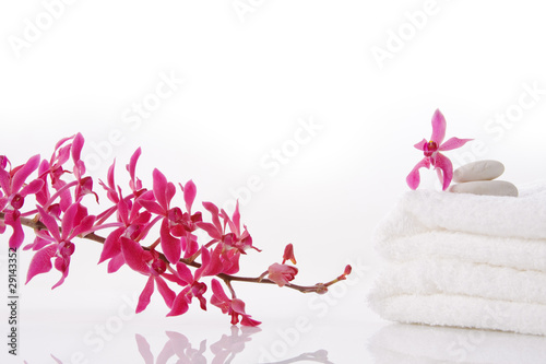 red orchid with towel
