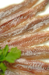 Anchovy fillets - Filetti di acciughe