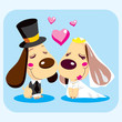 Cute married dog couple smiling in love on wedding day