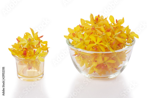 glass holders with yellow orchid heads