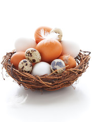 Eggs in a  nest on a white background