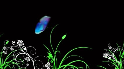 butterfly and plants - rgb and alpha (overlay on any background)