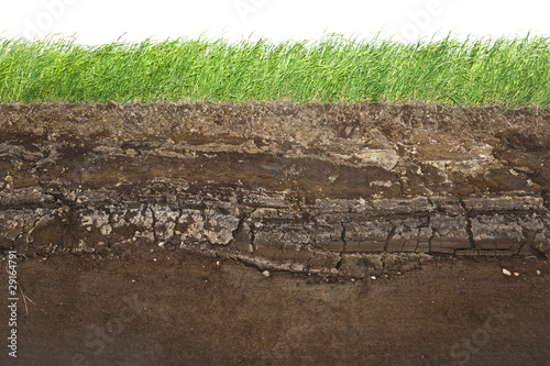 Leinwandbild Motiv Grass and soil layers isolated on white