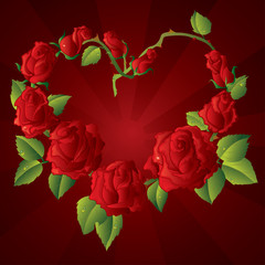 Heart shape Framework made of Beautiful red roses