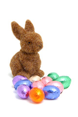 brown bunny and easter eggs over white background