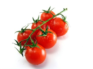 Wet fresh tomatoes with stem & leaves on white background