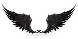 Wings black