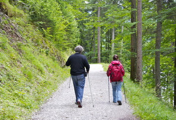 2 Wanderer im Wald