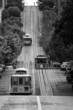 San Francisco Street Cars