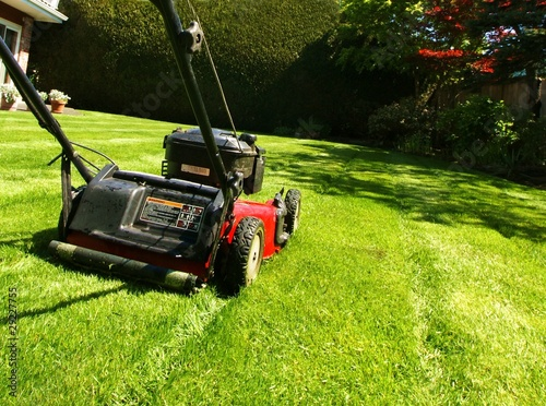 canvas print picture lawn mowing