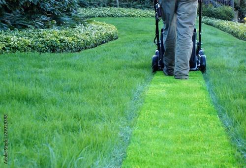 lawn maintenance company - 29229398