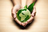 écologie planète terre main